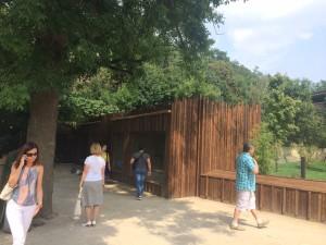 Expozice mravenečníků v pražské zoo